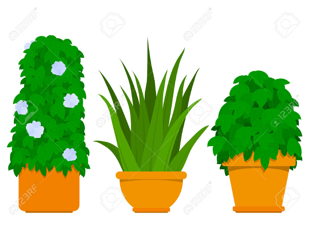 Showing post & media for Cartoon potted plants.