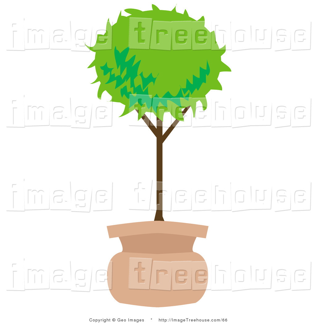 Potted Tree Clipart.