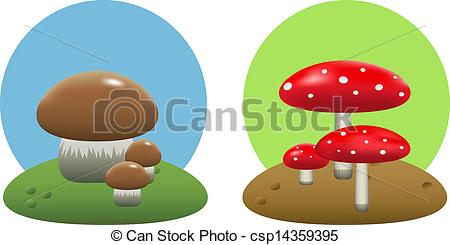 EPS Vectors of Mushrooms.
