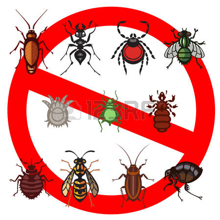 819 Infestation Stock Illustrations, Cliparts And Royalty Free.