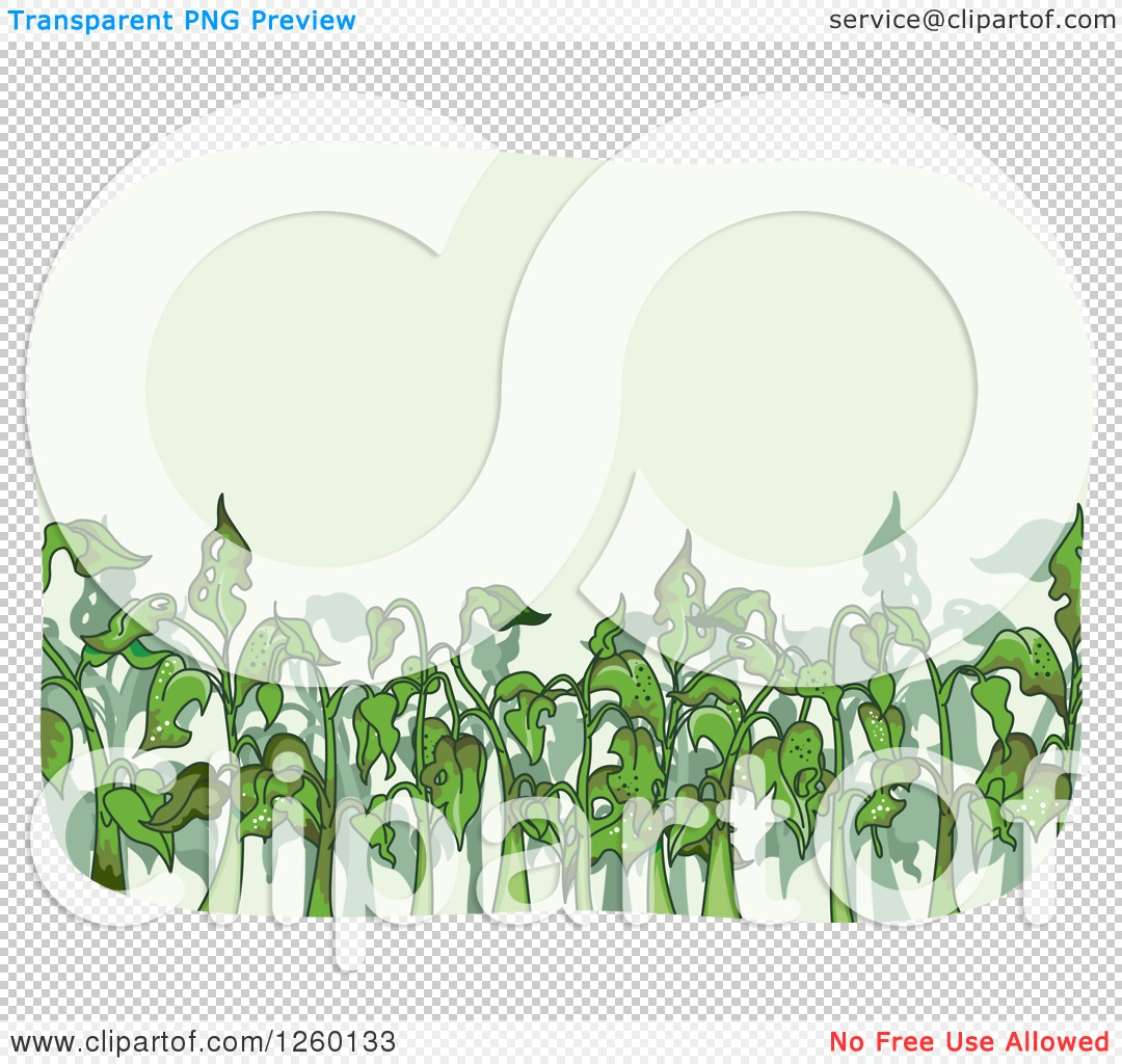 Clipart of Bug Infested Plants.
