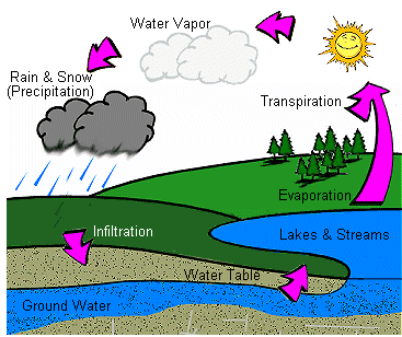 The Water Cycle Clip Art, Water Cycle Free Clipart.