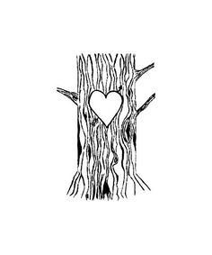 BARE TREES.