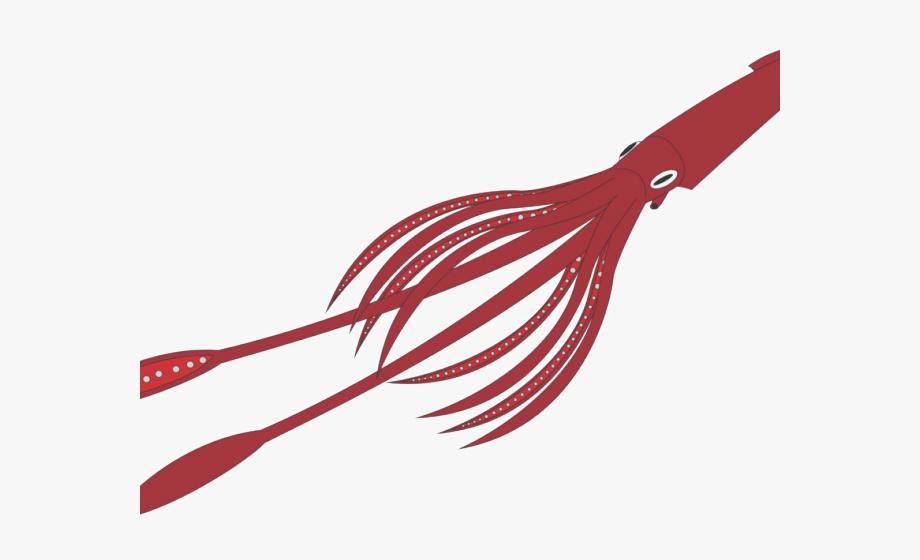 Squid Clipart Transparent Background.