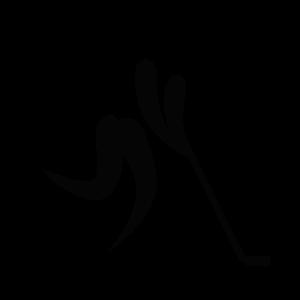 File:Inline hockey pictogram.svg.