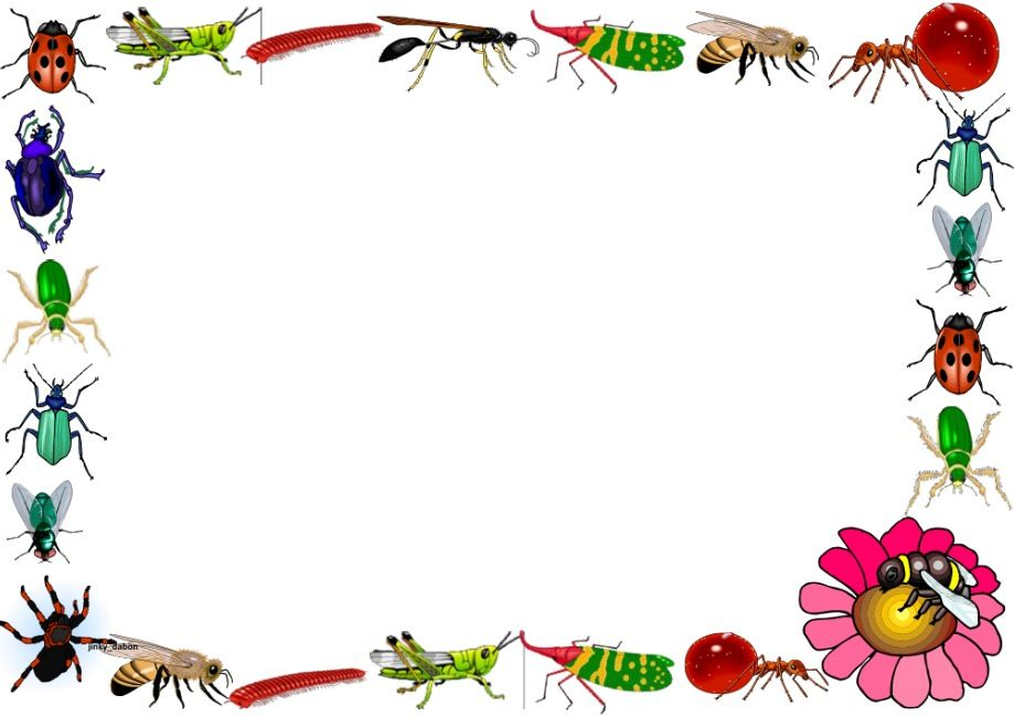 Insects Themed Lined Paper and Pageborders.