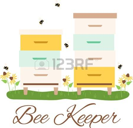 Insect Box Stock Vector Illustration And Royalty Free Insect Box.