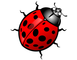Free Cute Insect Clipart.