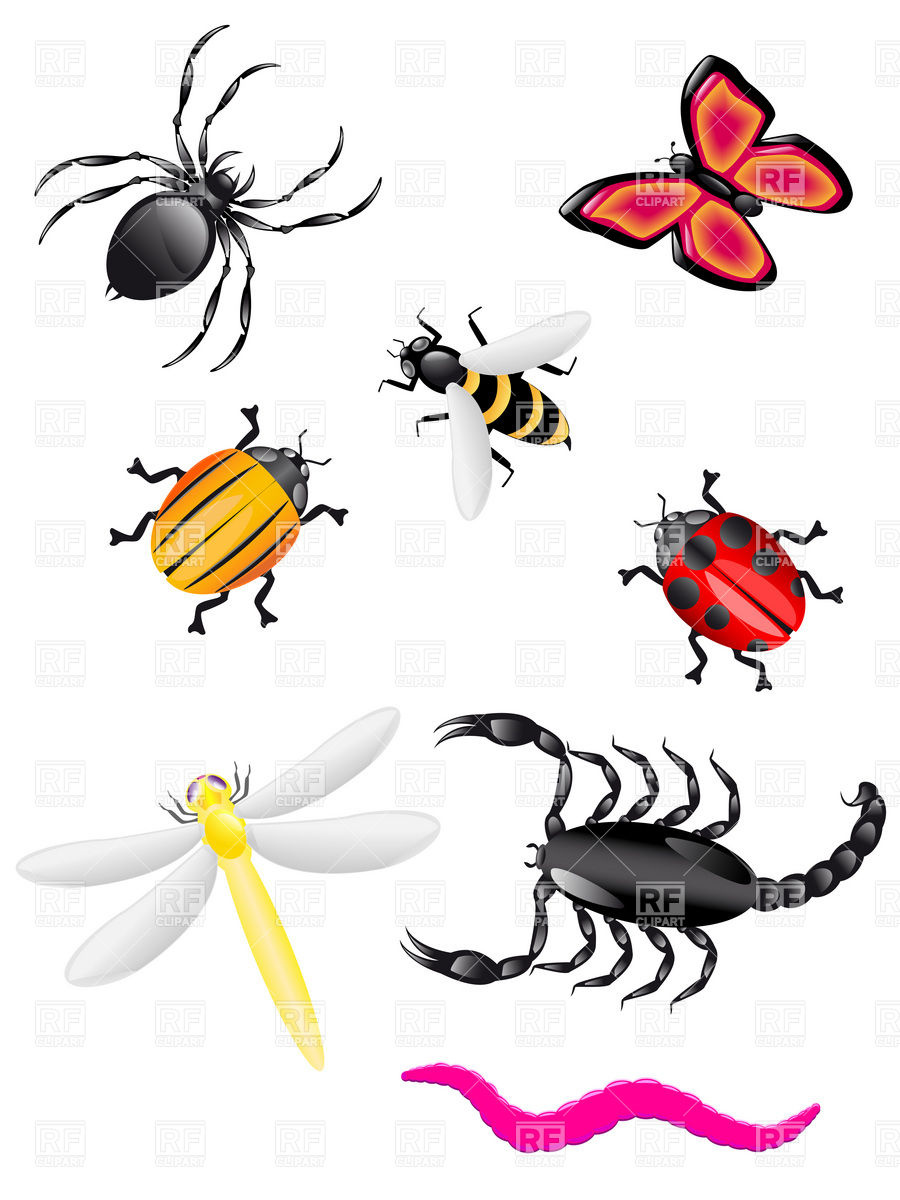 Bugs and insects clipart kid 3.
