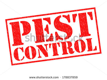 Pest Stock Images, Royalty.