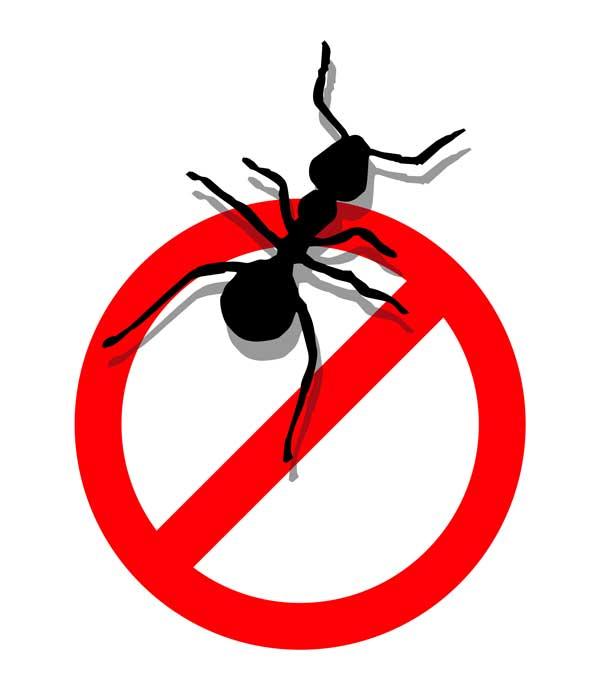 Pest Target India.