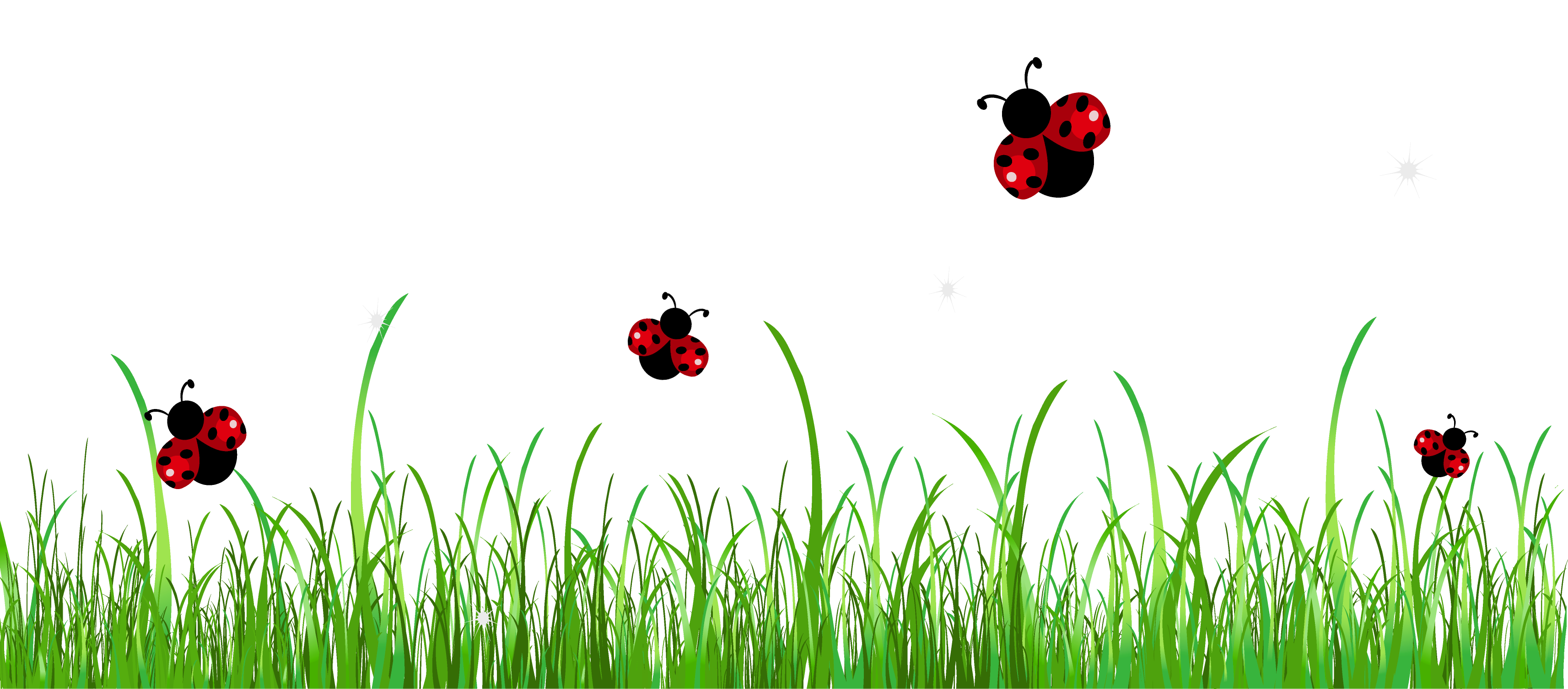Grass with Ladybugs PNG Clipart Picture.