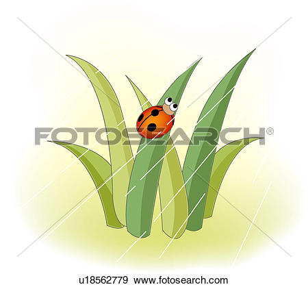 Clip Art of ladybug, weather, insect, grass, rain, natural world.