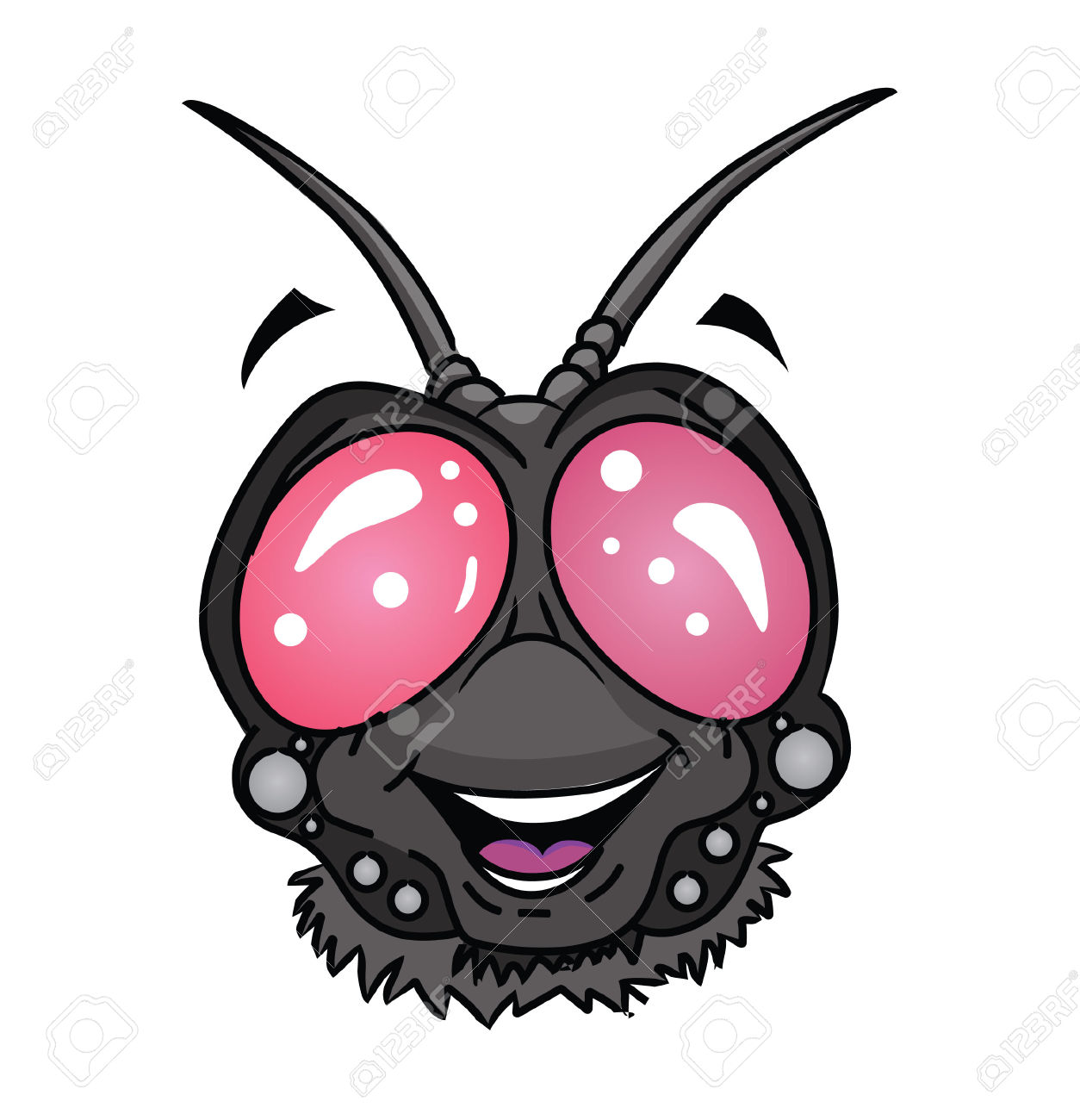 Fly Insect Head Cartoon Royalty Free Cliparts, Vectors, And Stock.