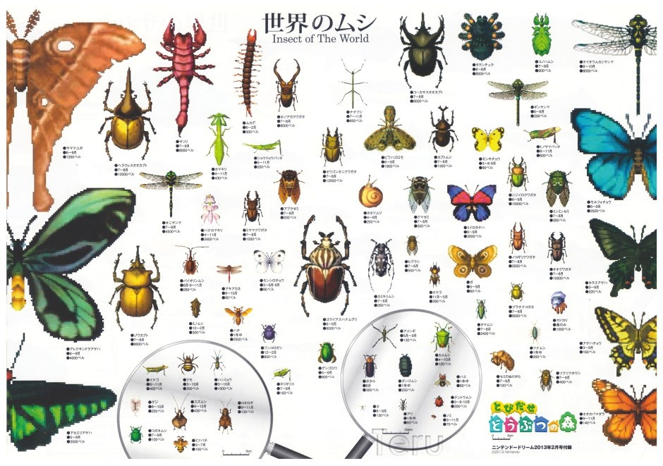 Insect identification clipart #16