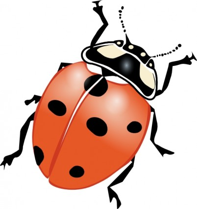 Insects clipart image.