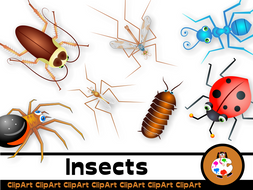 Cartoon Insect Clip Art Set.