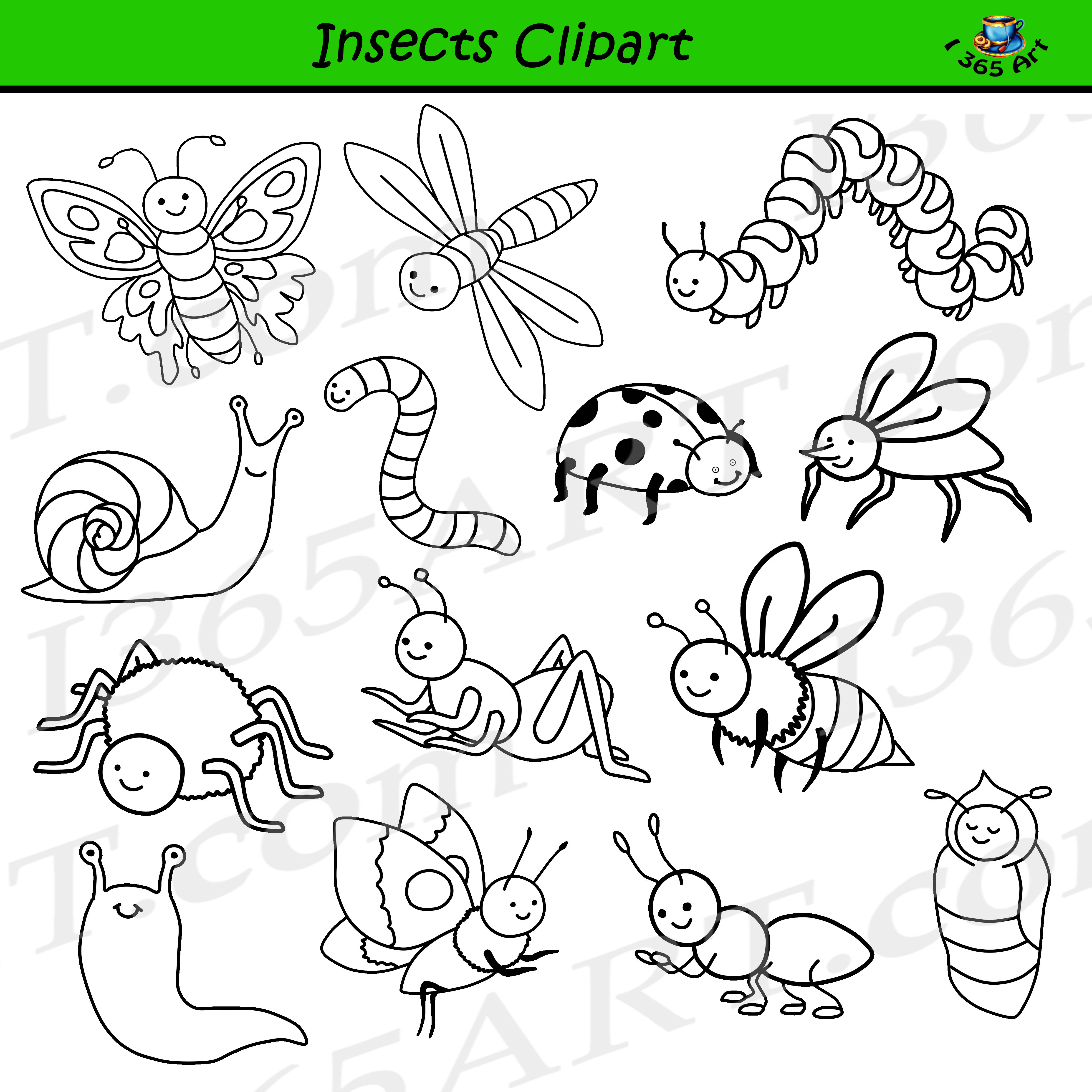 Insect Clipart Images.