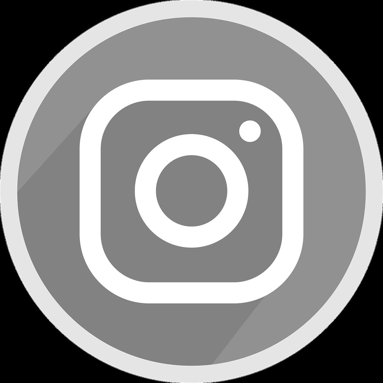 Logo instagram,icon,grey,social media,free vector.