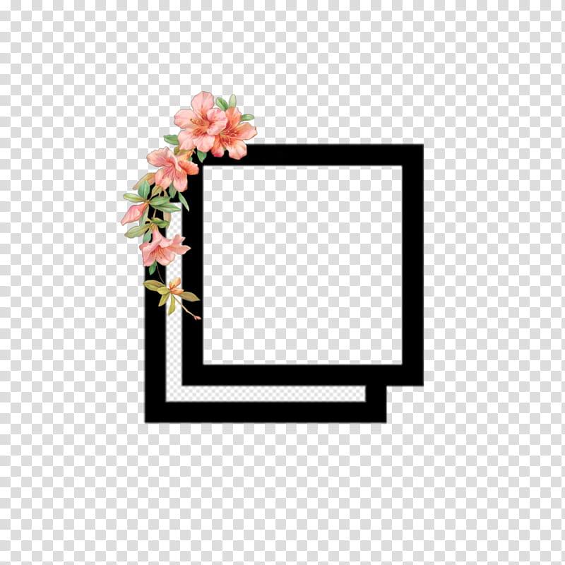 Flower Background Frame, Video, , Instagram, Television Show.