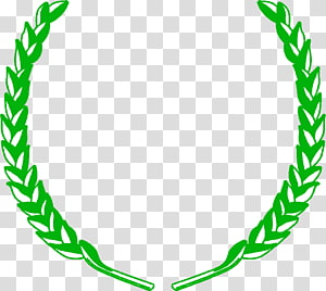 Diploma In Engineering transparent background PNG cliparts.