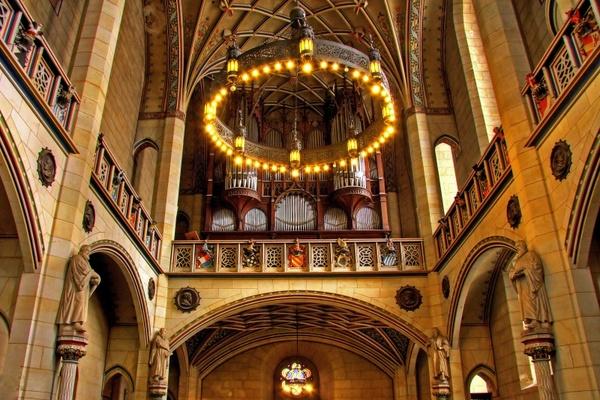 Organ church instrument lutherstadt wittenberg Free stock photos.