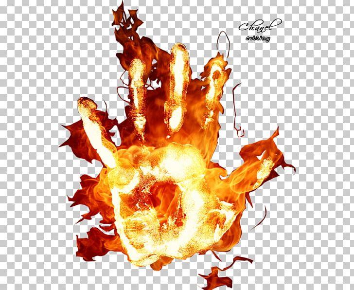 World Wide Web Graphics La Insuperable Flame PNG, Clipart.