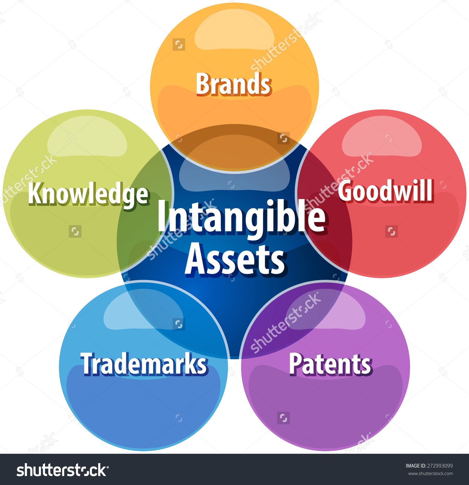 intangible assets Reporting requirements for annual financial reports of state agencies and universities capital assets capital asset categories intangible assets.