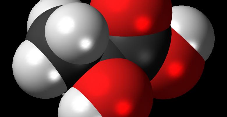 Global Lactic Acid Market Overviwe 2019.