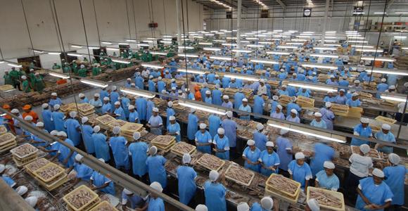 Fisheries boom Papua New Guinea.