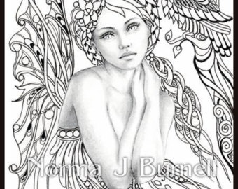 Intricate Fairy Coloring Pages.
