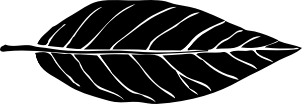 Lanceolate Leaf Black Invert Clip Art at Clker.com.