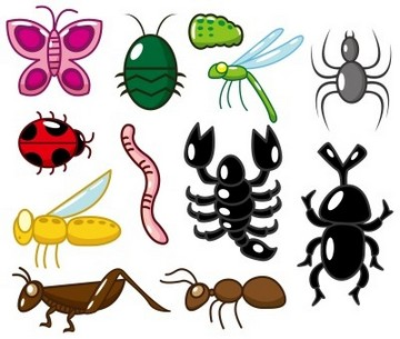 Invertebrates.