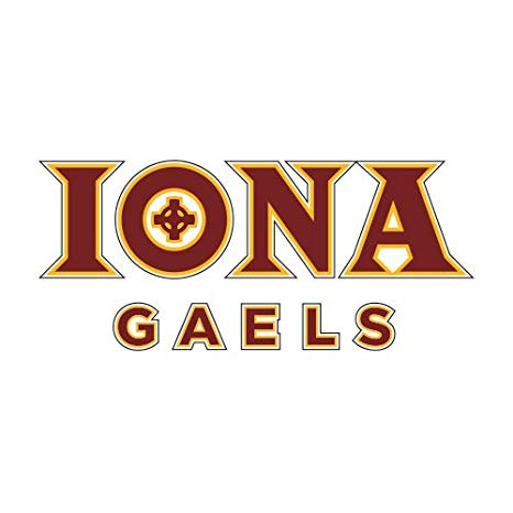 Amazon.com : Iona Extra Large Decal \'Official Logo\' : Sports.