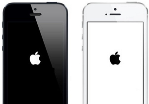 Recover iPhone Data Due to White Screen of Death.