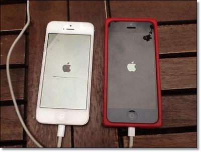 iPhone/iPad Turns into White Apple Logo Screen.