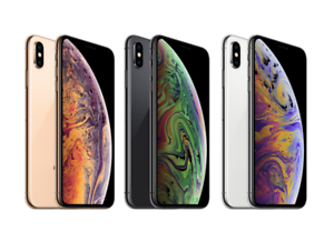 Details about Apple iPhone XS 256GB.