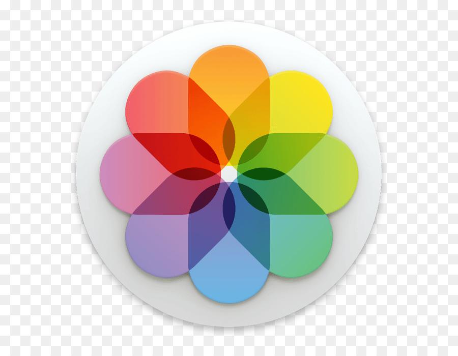 Flower Circle png download.