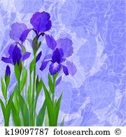 Iridaceae Clipart and Illustration. 23 iridaceae clip art vector.