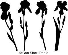 Iridaceae Vector Clipart Illustrations. 23 Iridaceae clip art.