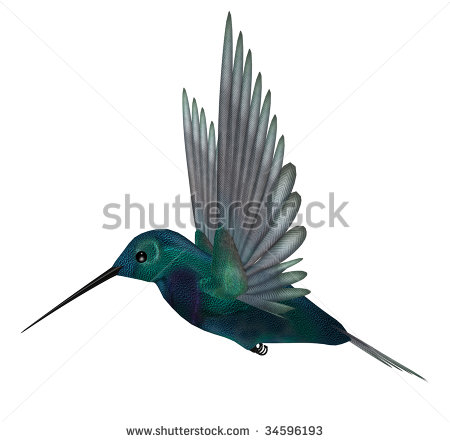 Blue Green Hummingbird Having Brilliant Iridescent Stock.