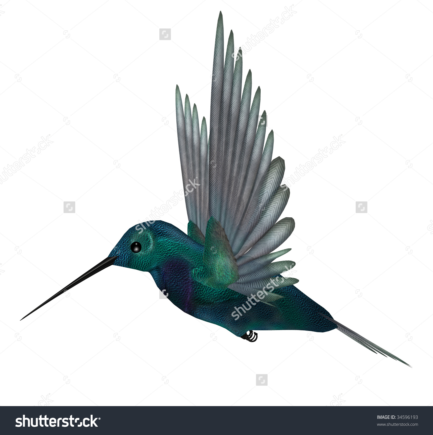 Blue Green Hummingbird Having Brilliant Iridescent Plumage And.