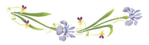 Iris Flower Border Wall Stencil.