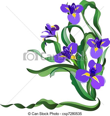 Iris Clipart and Stock Illustrations. 9,161 Iris vector EPS.