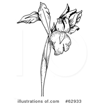 Iris clipart black and white.