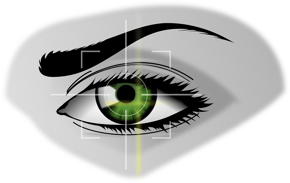 Free vector graphic: Biometrics, Eye, Security.