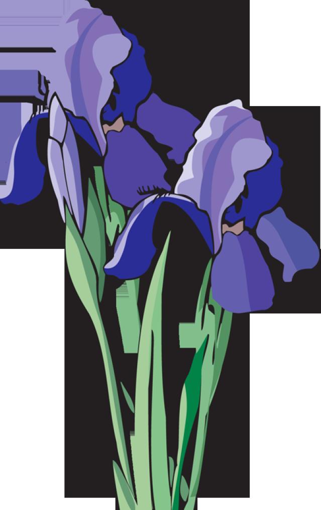 Iris Clip Art & Iris Clip Art Clip Art Images.