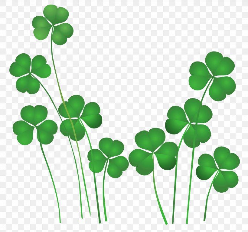 Saint Patrick\'s Day Shamrock Leprechaun Irish People Clip.