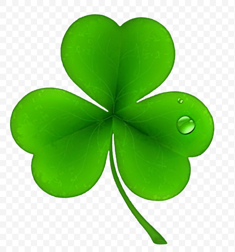 Ireland Saint Patrick's Day National ShamrockFest Public Holiday.