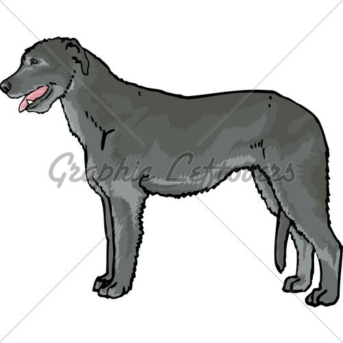 Irish wolfhound clipart.